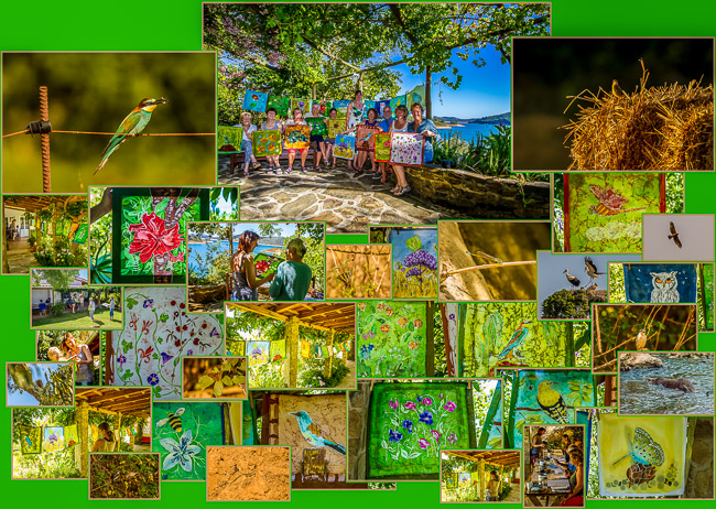 Batik'n'Birding Week 2016
